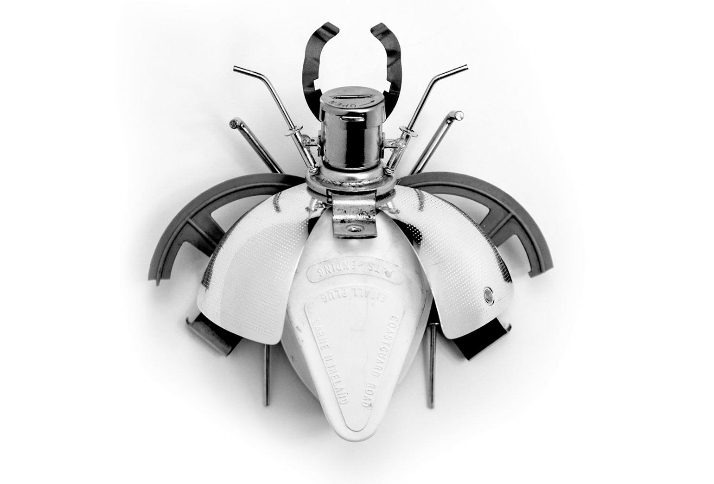 bug_49_model